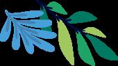 Hellio  leaf